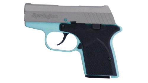 REM RM380 380ACP 2 9 6RD   RM380ROBINTITANIUM - Buds Gun Shop