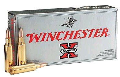 Winchester Ammo Supreme 45-70 Government Ballistic