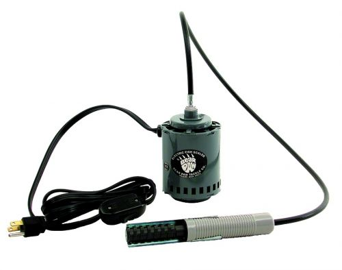 Electric fish scalers for Electric fish scaler