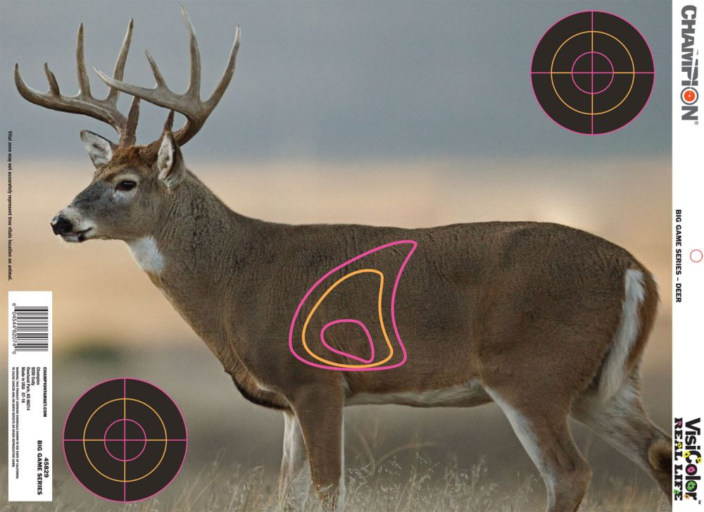 photograph relating to Deer Vitals Target Printable titled Whitetail Deer Vitals: Bowhunting How-Towards: Where by In direction of Concentrate Upon A