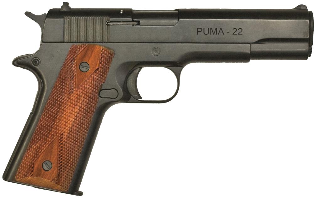 22 magnum 1911 http www hipointfirearmsforums com forum f277 best