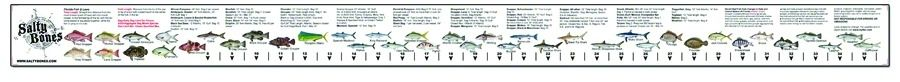Fish ruler sticker for Fish ruler sticker
