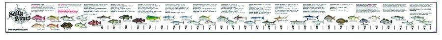 Fish ruler sticker for Fish ruler sticker