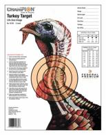 Champion Practice Target 12 Pack - 45780