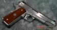 Wilson Combat Protector 1911 .45 all Stainless - WCPTRSSA