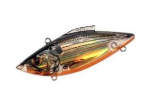 Lectric Shad - RTL2