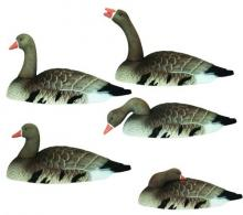 Speck Shell Goose Decoys - 01-103-0004