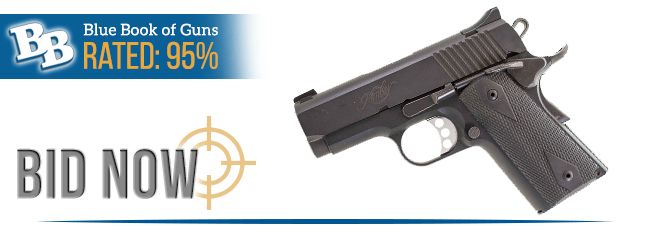 Blue Book of Guns Rated 95%