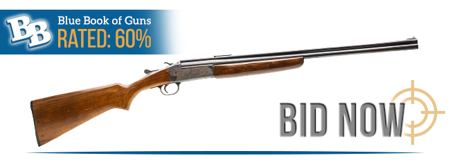 BLUE BOOK OF GUNS RATED 60%