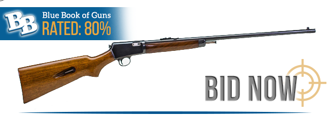 BLUE BOOK OF GUNS RATED 80%