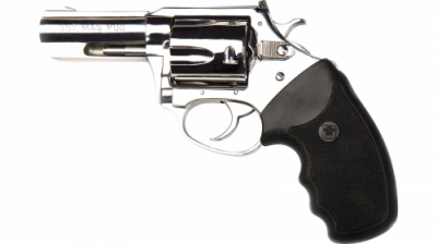 CHARTER ARMS MAG PUG 357MAG 3